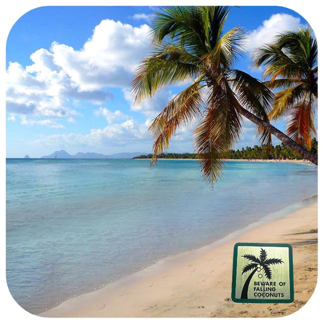 Reisetipp18_LesSalines-Martinique