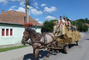 Rumänien Pferdewagen