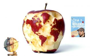 Apfel als Globus Cover